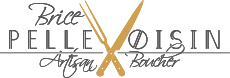 Logo brice pellevoisin